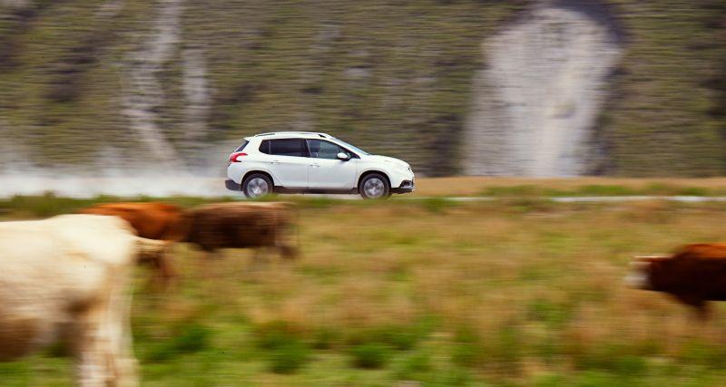 На фото Peugeot 2008 в движении