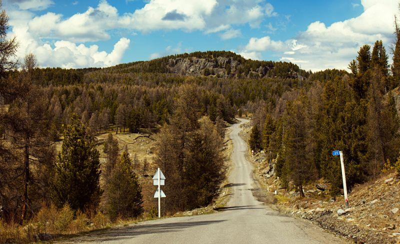 Путешествие с Peugeot 2008 по дорогам Горного Алтая