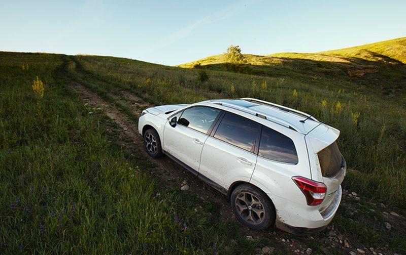 Subaru Forester XT вне асфальта